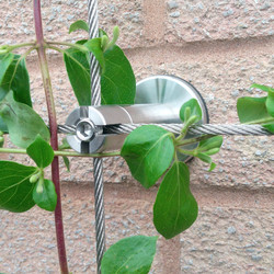 Stainless Steel Cable Trellis
